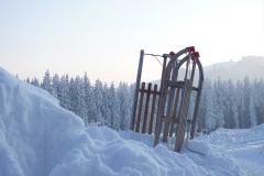 BDM2012-02-3.Platz-Im_Schnee-Baldes