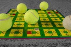 BDM2014-05-3.Platz-Ballspiele-Gerd
