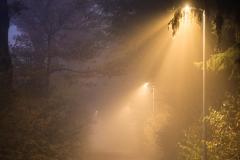 BDM2018-11-3.Platz-Foggy_Path-Helmut
