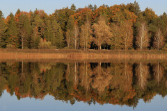 191013_Ostersee_MichaelK-9