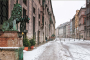 Fritz-Wintermorgen-Residenzstr